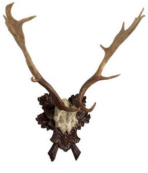 Resin Antlers On Oak Leaf Plaque